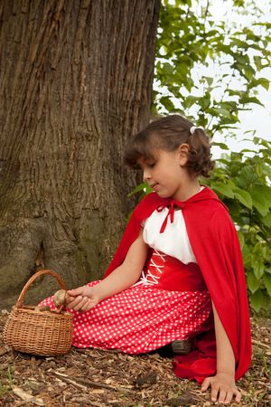 Little red riding hood picking mushrooms under a tree in the forest Stock Photo - 5565780