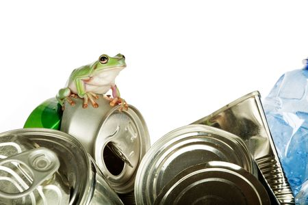 green tree frog: Ecology or environment image of a Whites Green Tree Frog on garbage Stock Photo