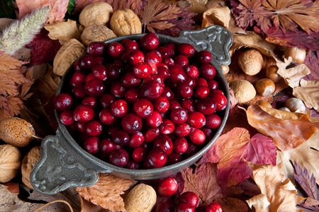 stilllife: Thanksgiving still-life with cranberries and autumn leaves Stock Photo