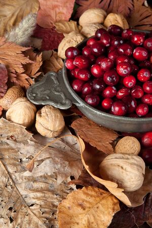 Thanksgiving still-life with cranberries, autumn leaves and nuts photo
