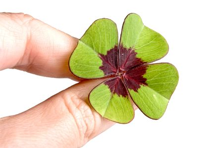 Hand holding a single four leaf clover Stock Photo - 6169522