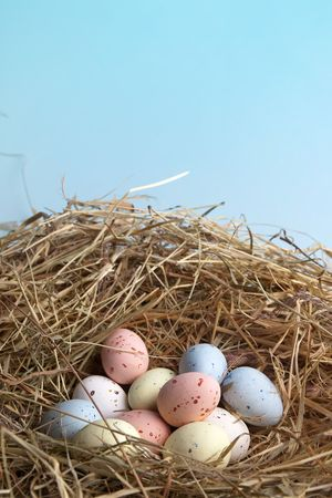 straw twig: Nest of hay with pastel colored easter eggs