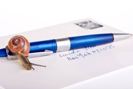 incidence: Snail on a letter (the address is the streetname with the highest incidence in the USA) Stock Photo