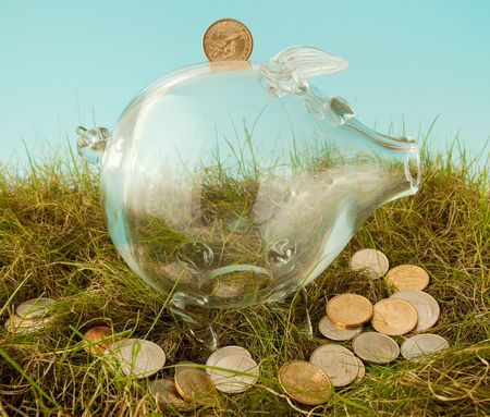 Glass piggy bank and scattered dollars in grass Stock Photo - 6529729