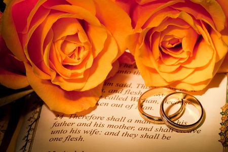 copied: Roses and bible with Genesis text of Adam and Eve, a typical wedding text - the book illustration is copied from a 400 years old bible. Stock Photo