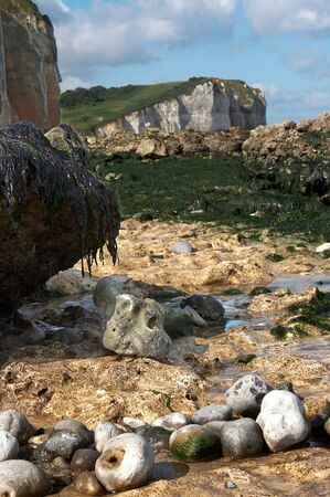 Boulders, seaweed and cliffs on the beaches of Normandy, France photo
