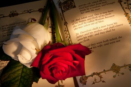 scripture: Roses and bible with Genesis text of Adam and Eve, a typical wedding text - the book illustration is copied from a 400 years old bible. Stock Photo