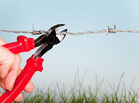 Hand cutting barbed wire with pair of pincers Stock Photo - 6700435