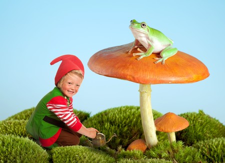Boy dressed as a garden gnome and a frog on a toadstool as in a fairytale photo