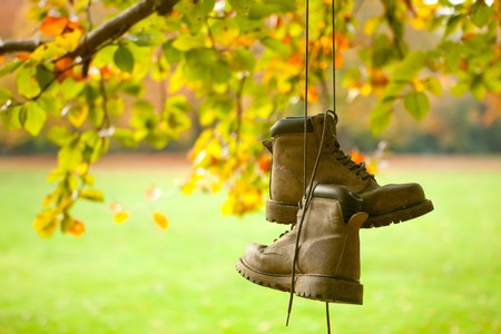 Old worn boots hanging on a tree in an autumn forest