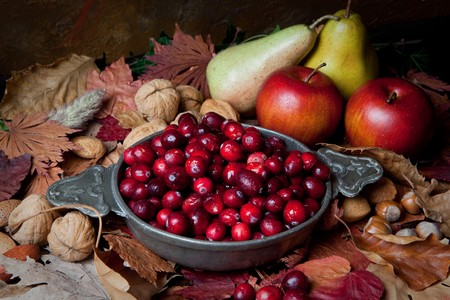 stilllife: Thanksgiving still-life with cranberries, autumn leaves, apples and nuts