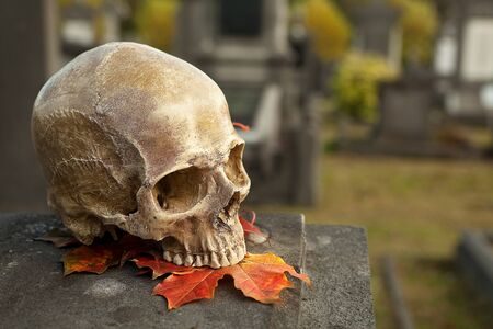 All Saints scene with a halloween skull in an autumn graveyard photo