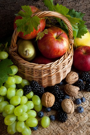 wild life: Still life for thanksgiving with autumn fruits, nuts and berries