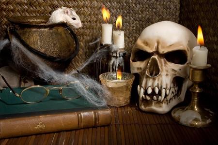 Little white gerbil rat in a halloween scene photo