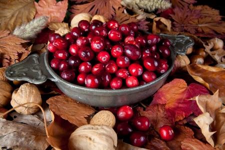 arandanos rojos: Bodeg�n de acci�n de gracias con ar�ndanos, oto�ales de hojas y frutos secos