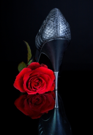 sexy heels: Sexy black high heels shoe and red rose on a reflecting black surface Stock Photo