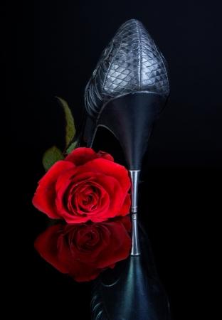 tacones: Zapato sexy tacones negro y Rosa Roja en una superficie reflectante de negra