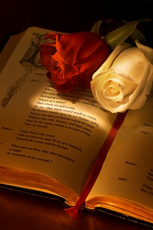 romeo: Two roses on the famous book romeo and juliet by Shakespeare, highlighting the passage about the rose whats in a name, the ideal valentine card