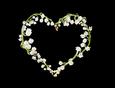 Heart shape made of lilly-of-the-valley flowers Stock Photo - 8613186