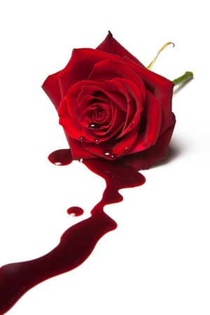 bleeding: Red rose with blood flowing out of its heart