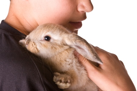lop: Young boy holding his seven weeks old furry friend