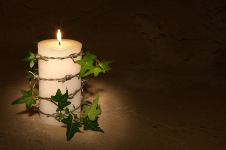 af: Barbwire and ivy curling around a burning candle, symbol of Amnesty International and civil rights