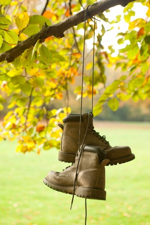walking boots: Old worn boots hanging on a tree in an autumn forest