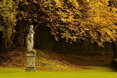civilians: Autumn at Schoonselhof, one of the largest and oldest cemeteries in Belgium, where civilians and soldiers lay side by side.
