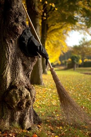 Halloween heks hoed en bezem tegen een boom