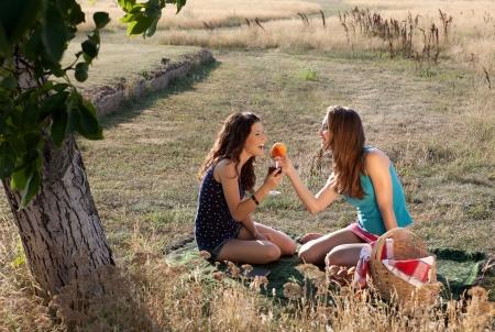 frutas divertidas: La luz de oro que brilla en noche de verano, dos mujeres que tienen un d�a de campo