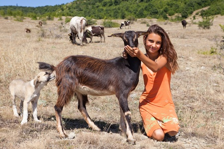 Young Shepherd girl looking after cattle in the Bulgarian mountains photo