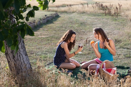 Summer picnic scene with two women sharing wine and peaches photo