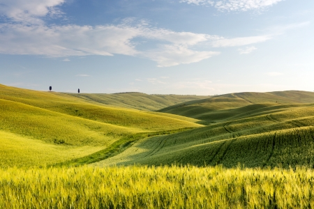 Wide view over the green rolling hills of the Tuscan countryside in Italy Stock Photo - 13965880