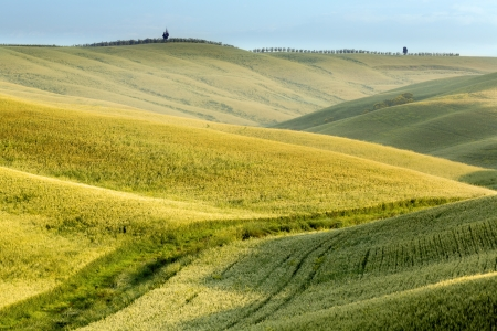 Scenic view on the green fields and rolling hills of Tuscany near Pienza Italy Stock Photo - 14310937