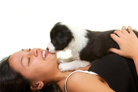 Adorable 5 weeks old border collie puppy giving kisses to a young woman photo