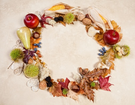 Fall border frame image of autumn fruits nuts and leaves photo