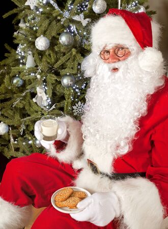 Santa claus in front of a christmas tree eating cookies and milk