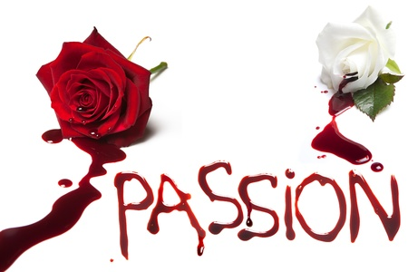 rose isolated: Bleeding roses and the bloody word Passion