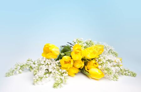 Easter bouquet of lilacs and yellow tulips with blue copy space Stock Photo - 17218692