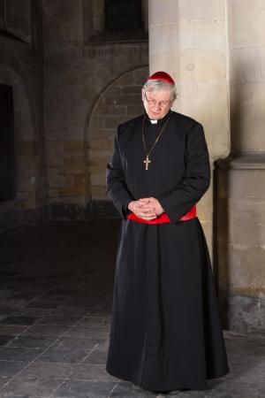 sotana: Cardenal pie contra un pilar de su iglesia medieval del siglo 14