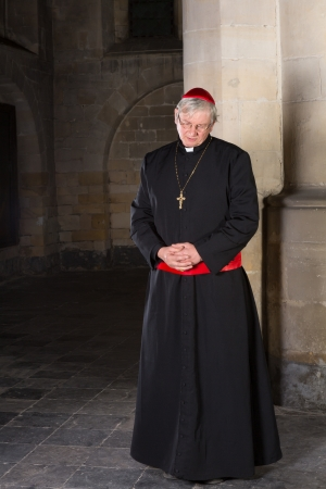 cassock: Cardinal standing against a pillar in his medieval 14th century church