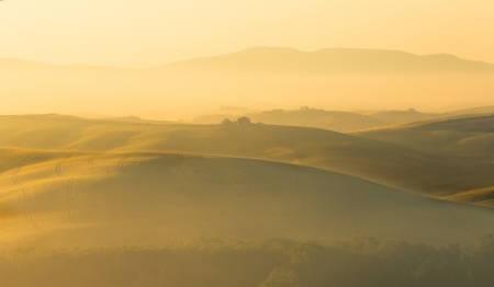 rolling: Rolling hills of Tuscany near Pienza in golden morning light and foggy mist Stock Photo