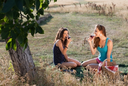 picnic blanket: Wine tasting young women during a picnic in golden evening light Stock Photo