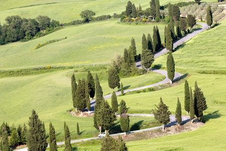 View on the winding roads through the rolling hills of Tuscany near monticchiello Stock Photo - 19656563