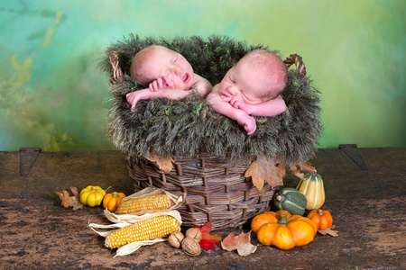 Rustic nature image of two newborn twin babies in a wicker autumn basket photo
