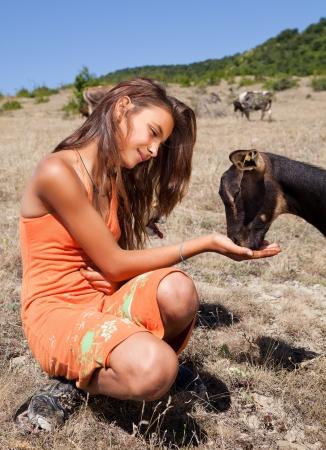 mountain dog: Goat feeding by a young shepherd girl in the Bulgarian mountains