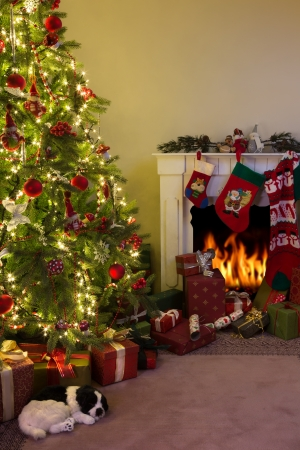 traditional living room: Burning fireplace and a dog sleeping under the christmas tree