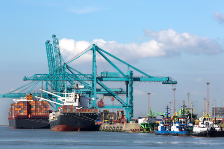 Huge container ships being loaded with cranes in Antwerp container terminal - all recognizable logos and brands have been removed
