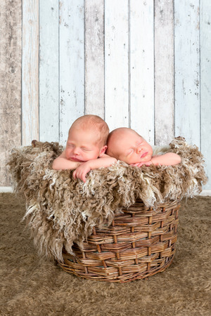 Ten days old newborn twin babies asleep together photo