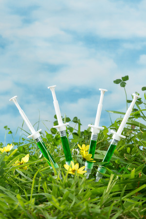 genetically modified: Four syringes in grass as a symbol for genetically modified dna and biotechnology